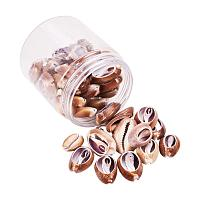 PandaHall Elite 50 pcs Tiny Cowrie Sea Shells Oval Ocean Beach Spiral Seashells Craft Charms Length 26-35mm Candle Making Home Decoration Party Wedding Decor Fish Tank Vase Filler(No Hole)