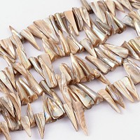 ARRICRAFT Natural Shell Beads Strands, Erose, White, about 4~9mm wide, 13~35mm long, hole: about 0.5mm, 14 inches