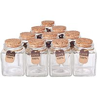 BENECREAT 10 Pack 3.4oz 100ml Glass Favor Jars with Cork Lids, Tags and Strings Square Glass Jars for Home Party Candy Snacks Favor Storage and Decoration