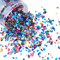 Olycraft Shell Beads, No Hole Beads, Dyed, Shell Shards, Chip, Mixed Color, 1~15x1~15x0.5~5mm; 280g/box
