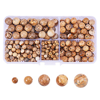 PandaHall Elite 316 Pcs Tumbled Picture Jasper Sandstone Brown Gemstone Round Beads 4mm 6mm 8mm 10mm Mix Lot Box Set with Box Container