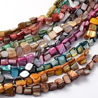 ARRICRAFT Irregular Natural Sea Shell Beads Strands, Dyed, Mixed Color, 8x6~8mm, Hole: 1mm, about 53pcs/strands, 16 inches