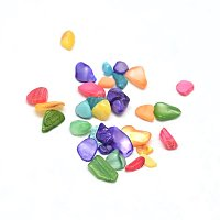NBEADS 1000g Dyed Natural Shell Chip Beads, No Hole, Mixed Color, 3~9x1~4mm
