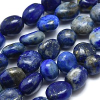 Arricraft Natural Lapis Lazuli Beads Strands, Tumbled Stone, Nuggets, 10~11x7~8x5~6mm, Hole: 0.8mm, about 37pcs/Strand, 15.75 inches(40cm)