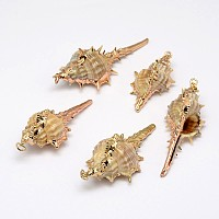 Golden Electroplated Conch Shell Pendants, 18~63x13~28x12~23mm, Hole: 2mm