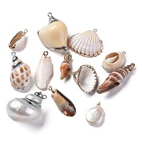 Natural Shell Pendants, Edge Plated, Mixed Shapes, Mixed Color, 21.5~42x8.5~30x6~19mm, Hole: 1.4~5mm