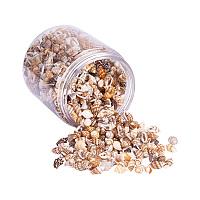 PandaHall Elite 1Box About 1400-1500Pcs Spiral Seashells Dyed Beads and Charms for Craft Making 7-12mm Length Lemon Chiffon