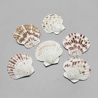 Sea Shell Big Pendants, Saddle Brown, 45~62x48~66x4~8mm, Hole: 1.5mm; about 75pcs/500g