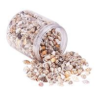 PH PandaHall 200g 2 Styles Tiny Sea Shell Ocean Beach Spiral Seashells Craft Charms for Candle Making Home Decoration Beach Theme Party Wedding Decor Fish Tank and Vase Filler(1mm/1.2mm Hole)