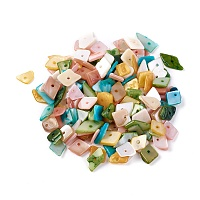 Nbeads Shell Beads, Dyed, Nuggets, Mixed Color, 6.2~15.2x4.3~7.3x0.4~3.8mm, Hole: 1mm