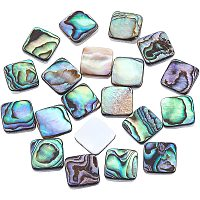 Natural Abalone Shell/Paua Shell Cabochons, with Freshwater Shell, Square, Colorful, 10x10x3mm; 20pcs/box