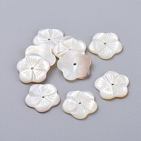 NBEADS Natural White Shell Beads, Mother of Pearl Shell Beads, Flower, 14~14.5x1.5~2mm, Hole: 1.2mm