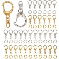 PH PandaHall 80 pcs 2 Sizes Key Ring with Chain D Snap Hook Split Metal Keychain 80 pcs Open Jump Rings for Keychain Key Rings Jewelry Finding Making Handbag Chain Buckles Bag Belting Connector