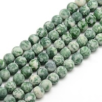 Arricraft Frosted Natural Green Spot Jasper Round Bead Strands, 6mm, Hole: 1mm, about 63~65pcs/strand, 14.9~15.6 inches