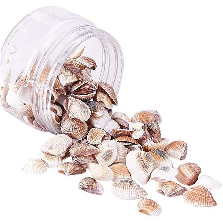 PH PandaHall 100 pcs Natural Conch Shell Beads Undrilled/No Hole Tiny Scallop Sea Shells Ocean Beach Seashells Craft Charms for Candle Making, Home Decoration Party Wedding Decor Fish Tank Vase Filler
