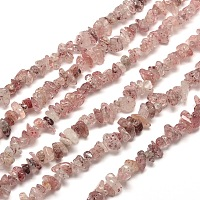 Arricraft Natural Strawberry Quartz Chip Bead Strands, 5~8x5~8mm, Hole: 1mm, about 31.5 inches