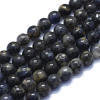 ARRICRAFT Natural Iolite Beads Strands, Round, 8mm, Hole: 1mm, about 48~49pcs/Strand, 15.35 inches(39cm)