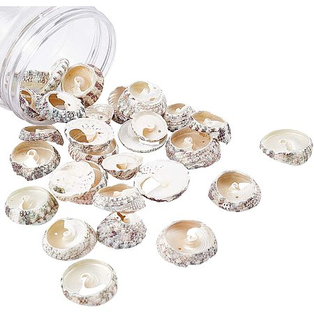 NBEADS 30 Pcs Spiral Shell Beads, Shell Drilled Beads Seashell Charms for DIY Necklace Bracelet Earring Making