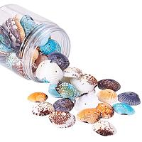 PH PandaHall 85 pcs Dyed Natural Conch Shell Beads Drilled Tiny Scallop Sea Shells Ocean Beach Seashells Craft Charms for Candle Making Home Decoration Party Wedding Decor