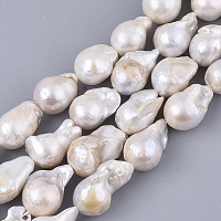 ARRICRAFT Natural Baroque Pearl Keshi Pearl Beads Strands, Cultured Freshwater Pearl, Teardrop, Seashell Color, 14~28x12~16x12~16mm, Hole: 0.6mm, about 19~26pcs/Strand, 15.75 inches(40cm)