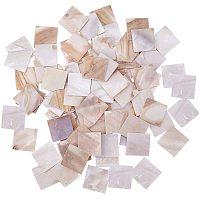 Arricraft 160pcs Square Shell Mosaic Tiles Pieces Chips Vases Picture Frames Flowerpots Mosaic Pieces for DIY Crafts Home Decoration Arts