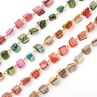 ARRICRAFT Handmade Sea Shell Beads Chains for Necklaces Bracelets Making, with Iron Eye Pin, Unwelded, Golden, Mixed Color, 39.3 inches