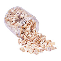 PandaHall Elite 1Box About 180-200Pcs Bulk Spiral Seashells Dyed Beads and Charms for Craft Jewelry DIY Making Home Deco 20-30mm Length