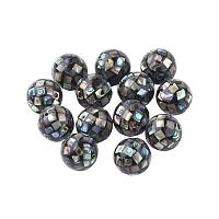 ARRICRAFT About 10pcs Black Round Paua Shell Beads Seashells Beads Pendants Charms with Holes for Craft Making, Home Decoration, Beach Party