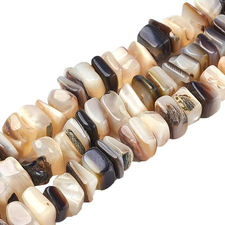 ARRICRAFT 5 Stands Square Chip Freshwater Shell Bead Strands Seashells Natural Gemstone Beads for Necklace, Bracelet, Jewelry Making, Home and Wedding Decor (15.7