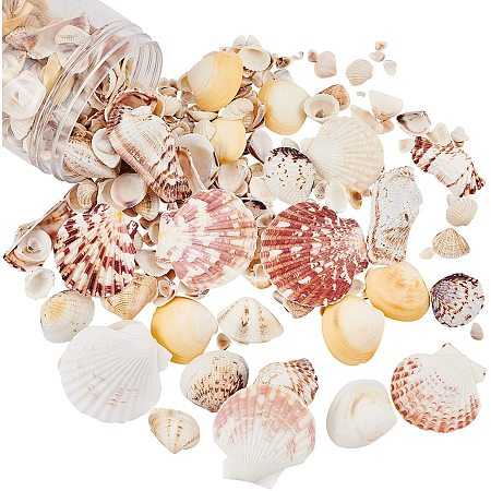 PandaHall Elite About 400g Tiny Sea Shells Mixed Ocean Beach Spiral Seashells Craft Charms for Home Decorations, Beach Theme Party, Candle Making, Wedding Decor, DIY Crafts, Fish Tank and Vase Filler