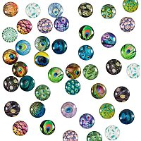 PH PandaHall 70pcs 70 Styles Peacock Feathers Glass Cabochons Half Round Tiles Embellishments 25mm Feather Glass Cabochons Dome Gems for Halloween Pendant Jewelry Making Handcrafts Scrapbooking
