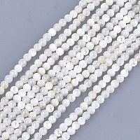 ARRICRAFT Natural White Shell Beads, Mother of Pearl Shell Beads Strands, Round, Ivory, 3mm, Hole: 0.8mm, about 121pcs/strand, 14.9 inches