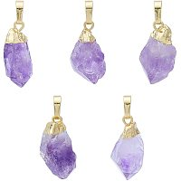 Arricraft 5PCS Drop Beads Pendants, Rock Charms, Gemstone Charms with Golden Brass Findings, Natural Amethyst Pendants for Necklace Jewelry Making