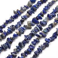 SUNNYCLUE Natural Lapis Lazuli Chip Beads, 5~8x5~8mm, Hole: 1mm, about 400pcs/box