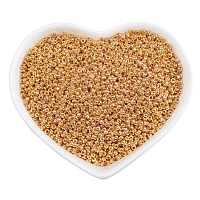 ORNALAND 12/0 Round Glass Seed Beads, Grade A, Iris Round Beads, Golden Plated, 2x1.5mm, Hole: 0.5mm; about 16500pcs/bag