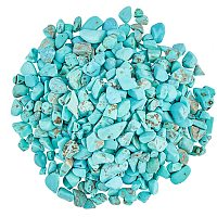 Dyed Natural Turquoise Chip Beads, No Hole/Undrilled, 3~9x1~4mm, 300g